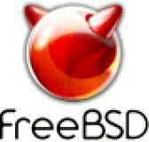FreeBSD видео
