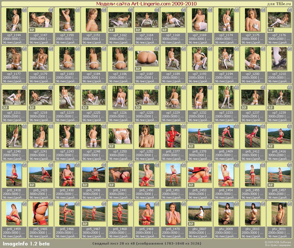 http://i1.imageban.ru/out/2010/04/22/93bd3041c29a07445a47c38aa6fa0650.jpg