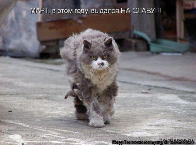 http://i1.imageban.ru/out/2010/09/19/892b3e9cab35e1c1a8bf3a8bf12eb891.jpg