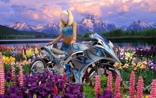 Шаблон для фотошопа - Цветочная поляна
