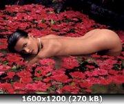 https://i1.imageban.ru/out/2010/12/23/ec774165737a1bff7cfa94b2abbd9f85.jpg