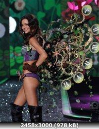 http://i1.imageban.ru/out/2011/01/05/165fe9baadfff5d6d11cf934b2aad2ca.jpg
