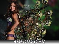 http://i1.imageban.ru/out/2011/01/05/7b7c1344b7af6d06c23a0782e2242936.jpg