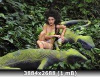 http://i1.imageban.ru/out/2011/01/11/5eda743732709834bbf71af9b3c3a8f2.jpg
