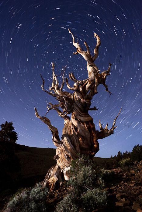 Шикарные фотографии природы