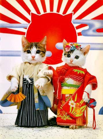 10 интересных фактов о японцах