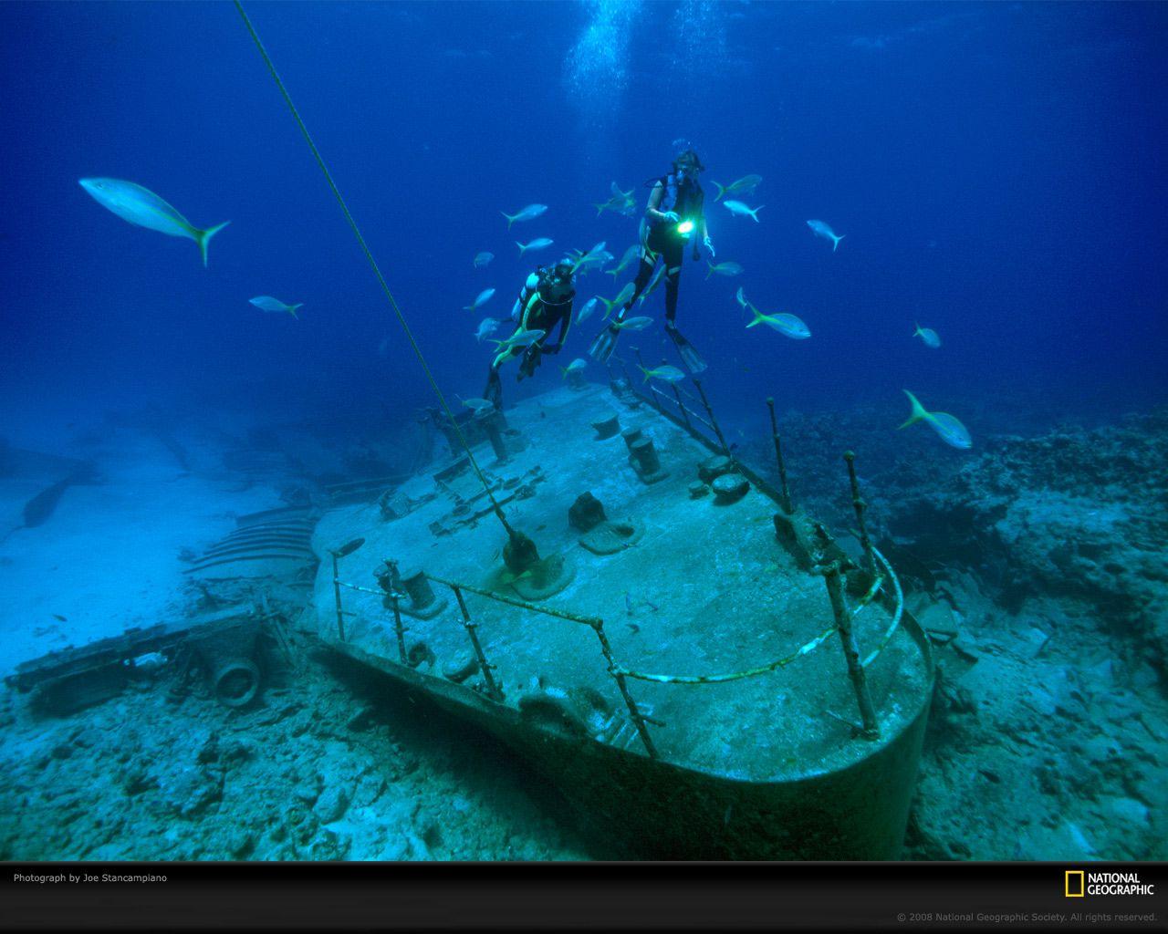 Это действительно очень необычно - дайвинг среди затонувших .