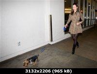 http://i1.imageban.ru/out/2011/03/29/052125ddad95804ec1085024f52f9ec3.jpg