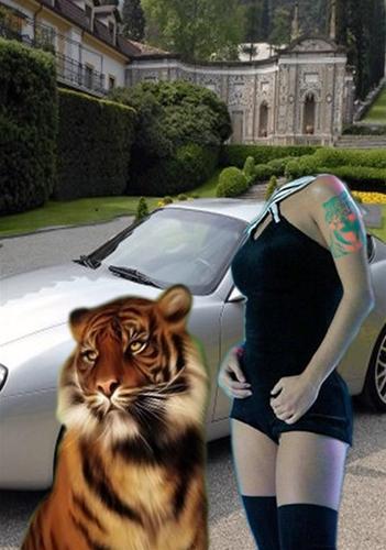 женский шаблон для фото красивая девушка с тигром