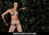 http://i1.imageban.ru/out/2011/05/03/dac4630c192a4b3f22515efd63625771.jpg