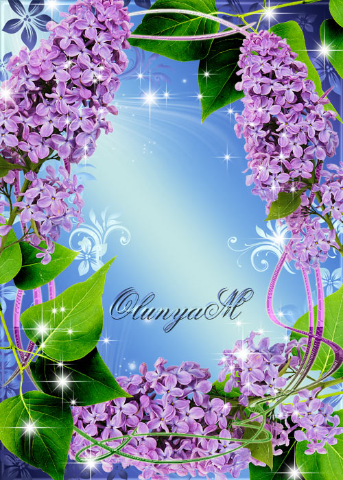 Flower frame - Lilac evening