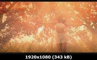 http://i1.imageban.ru/out/2011/05/10/c0a86d17c62f38be13a164556cbbd74c.jpg