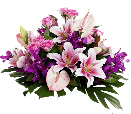 http://i1.imageban.ru/out/2011/05/14/c99a7191f4985c616cda55f30159b919.png
