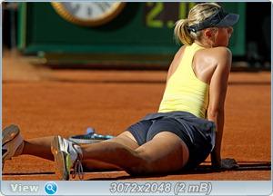 http://i1.imageban.ru/out/2011/05/15/68ca005842d82378644bc4bdebb4305c.jpg
