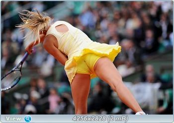 http://i1.imageban.ru/out/2011/06/01/32dd0d00f37bda9f2a29b08306f1646b.jpg