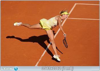 http://i1.imageban.ru/out/2011/06/01/a778f8ff290ebee328316a819be8a900.jpg
