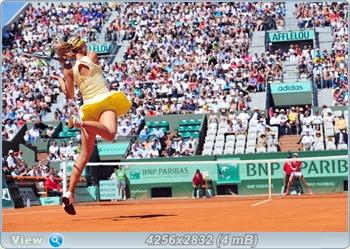 http://i1.imageban.ru/out/2011/06/03/3302073e26866b062527c7a418464eb3.jpg