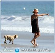 http://i1.imageban.ru/out/2011/06/14/8876378dc08f2d13e5d8afa39e665c45.jpg