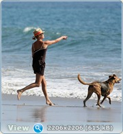 http://i1.imageban.ru/out/2011/06/14/c2f6f35ff068b40eaeea18805b80943c.jpg