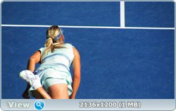 http://i1.imageban.ru/out/2011/08/14/e24ac147a0c10310fef06454cc3c663e.jpg