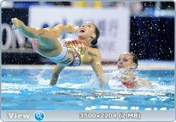 http://i1.imageban.ru/out/2011/08/25/6cba6da224280b37a24181ab0d351762.jpg