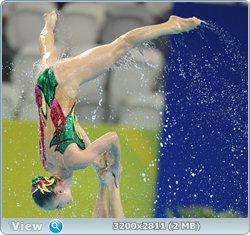 http://i1.imageban.ru/out/2011/08/25/77808dbefe77dc23fe82ac7329731fbe.jpg