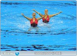 http://i1.imageban.ru/out/2011/08/25/e819be8f7a27201eab63464a2eafe818.jpg