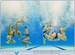 http://i1.imageban.ru/out/2011/08/25/f4fae7e244cf49b8dce6b474b1f690cd.jpg