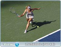 http://i1.imageban.ru/out/2011/08/30/1921960b89eaa03375c5dd7d80fa63a0.jpg