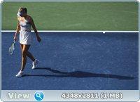 http://i1.imageban.ru/out/2011/08/30/8765bfe1d455f7fbfd5b311ea56571b5.jpg