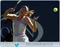http://i1.imageban.ru/out/2011/08/30/d492beef947c45b16d122e0b93230d03.jpg