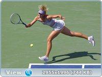 http://i1.imageban.ru/out/2011/09/03/04c7c19b611129687876ea68ec7f0bc0.jpg