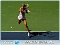 http://i1.imageban.ru/out/2011/09/03/59fc8cdff4d49c58689de1c9e1a03607.jpg