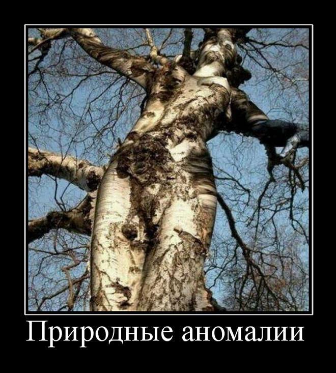 Природные аномалии