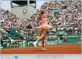 http://i1.imageban.ru/out/2011/12/03/130e6491073f0173980206517c177a37.jpg