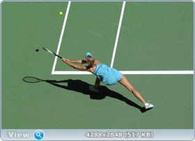 http://i1.imageban.ru/out/2011/12/03/612a17b1003da77a2489daf259d13652.jpg