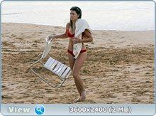 http://i1.imageban.ru/out/2011/12/05/5deb5c5a643002e01a5e97044a72ce17.jpg