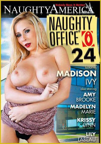 Развратный Офис 24 / Naughty Office 24 (2011) DVDRip