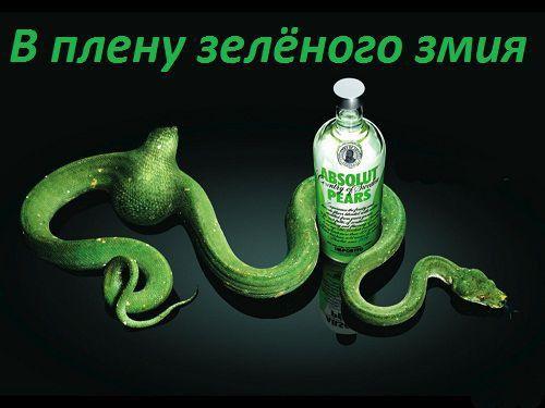 В плену зелёного змия