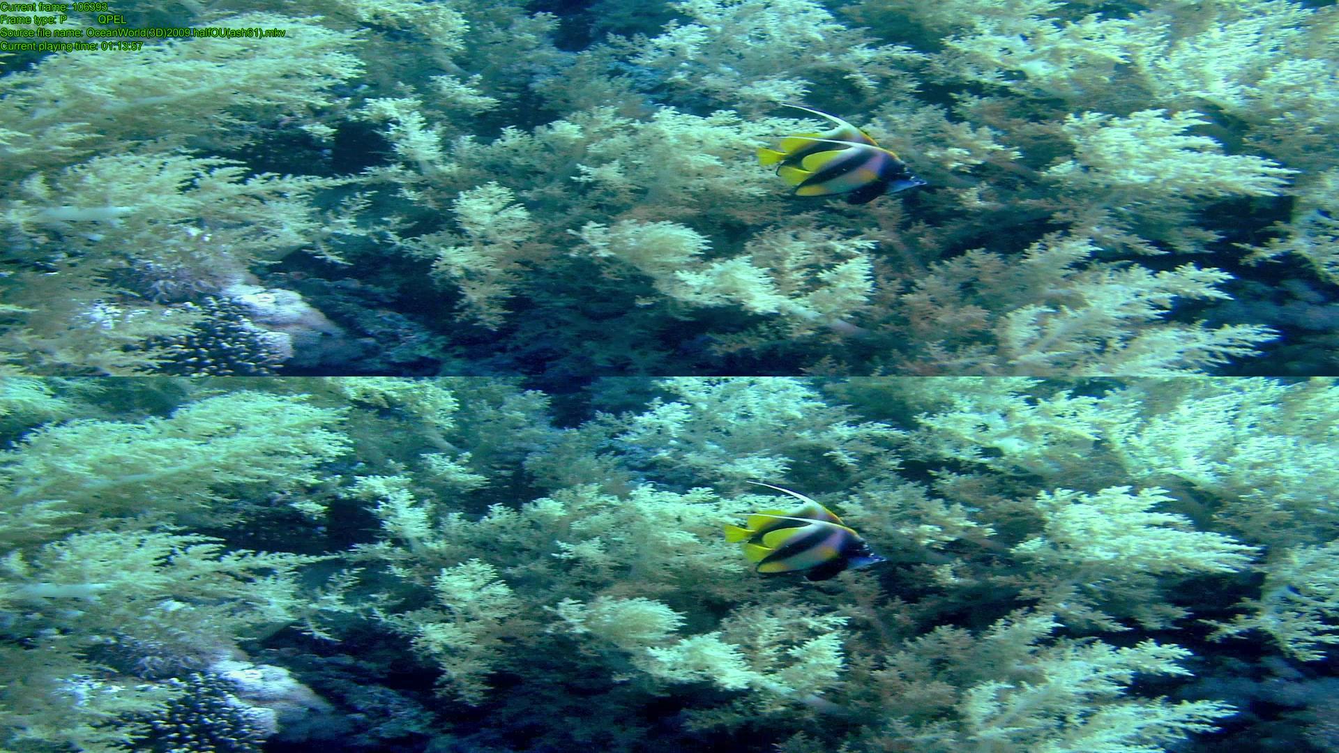 OceanWorld-15.png