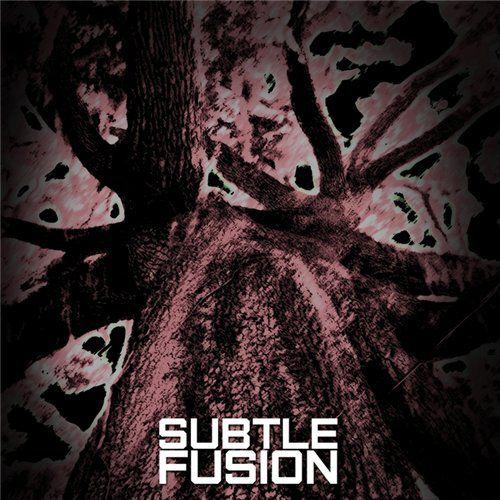 Subtle Fusion - Subtle Fusion (2012)