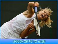 http://i1.imageban.ru/out/2012/04/05/38ff344b37baafd920876f2bdd52313e.jpg