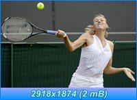 http://i1.imageban.ru/out/2012/04/05/98e0130f9a43c1a36b373d401b22b783.jpg