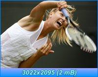 http://i1.imageban.ru/out/2012/04/05/fab88c8b76976ba08c479d5297faa64c.jpg