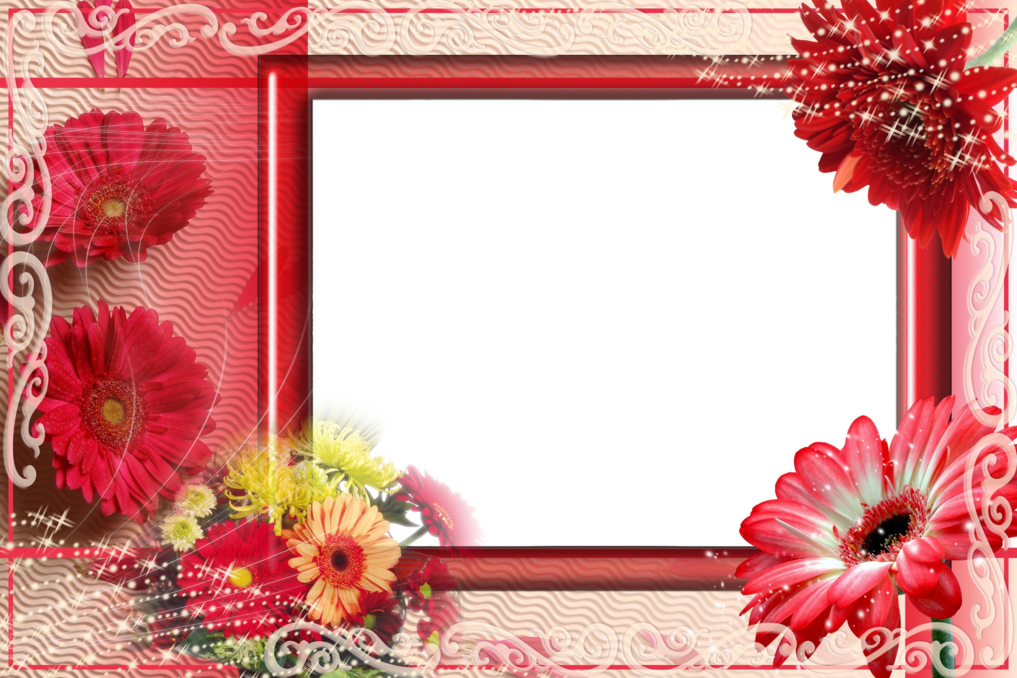 Вставить фото в рамку цветы