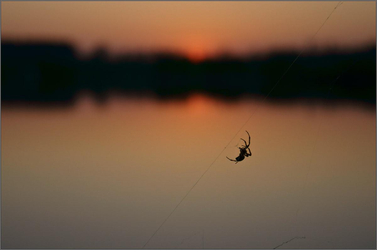 http://i1.imageban.ru/out/2012/05/06/4ff3f4dab48d277b5b9cc781ed3d9a31.jpg