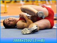 http://i1.imageban.ru/out/2012/05/14/8cd1fde36606518b51838b92d63219c6.jpg