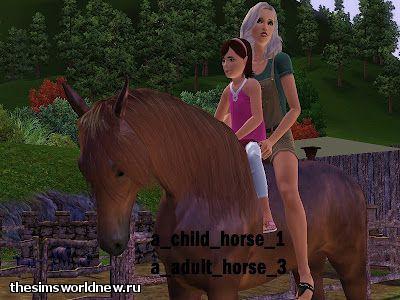 MTS_jamee-1293974-child1adult3 (1).jpg