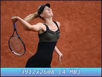 http://i1.imageban.ru/out/2012/12/11/001bff143fa543cb5f665b4936c074d7.jpg