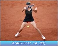 http://i1.imageban.ru/out/2012/12/11/696d1cdc01ed2a6615097fe3656fc3f0.jpg
